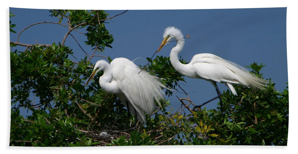Great White Egret Bird Feathers Animal Wildlife Florida Photograph Photography Bath Sheet featuring the photograph A Helping Beak by Shari Jardina