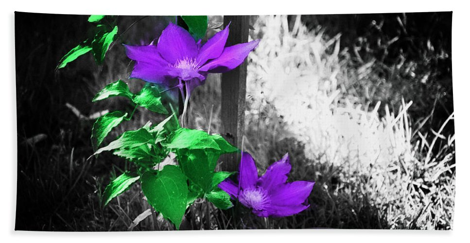 Flowers Bath Sheet featuring the photograph A Little Color Into This World by Bill Cannon