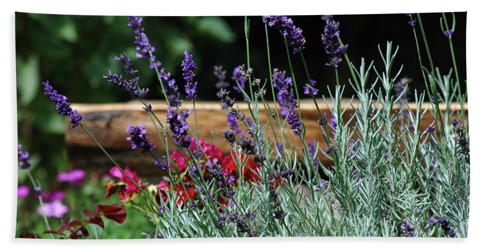 Lavender Bath Sheet featuring the photograph A Little Lavender by Lori Tambakis