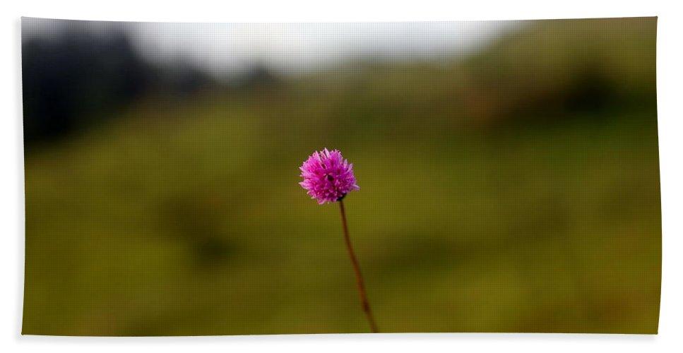 Flower Bath Sheet featuring the photograph A Little Violet Flower by Silpa Saseendran