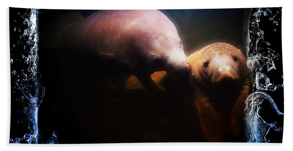 Manatee Family 1 Hand Towel featuring the photograph A Look Into Another World by Sheri McLeroy