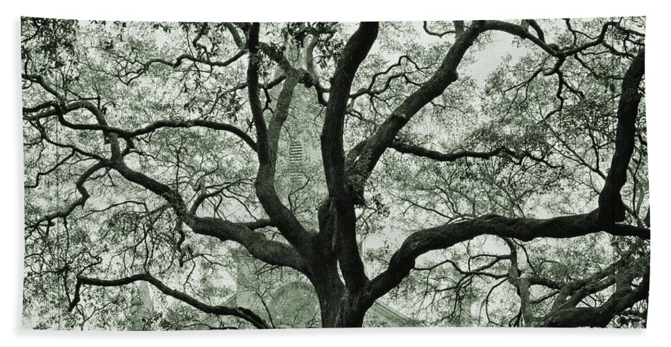 Lutheran Church Of The Ascension Hand Towel featuring the photograph A Look Through The Branches  by Lydia Holly