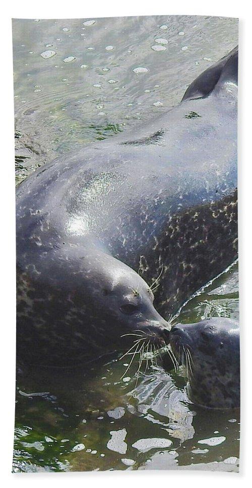 Harbor Seal Bath Sheet featuring the photograph A Mama's Love by Sandra O'Toole