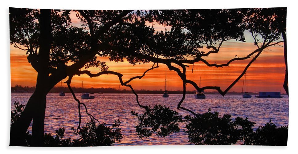 Hh Photography Of Florida Bath Sheet featuring the photograph A Mangrove Morning by HH Photography of Florida