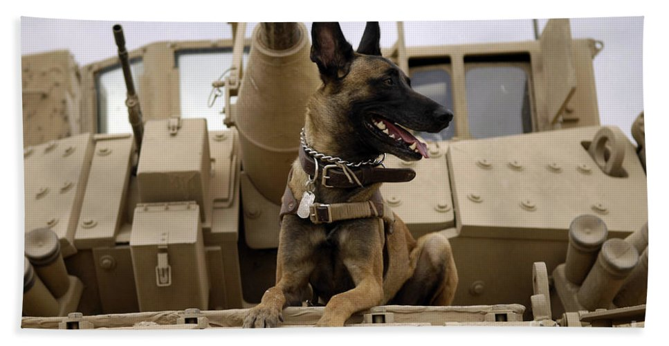 Color Image Hand Towel featuring the photograph A Military Working Dog Sits On A U.s by Stocktrek Images