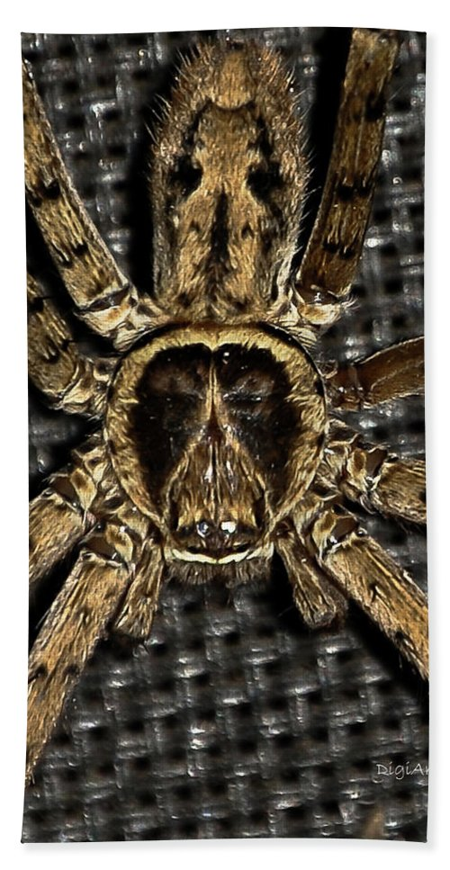 Spider Bath Sheet featuring the photograph A Monkey On Its Back by DigiArt Diaries by Vicky B Fuller