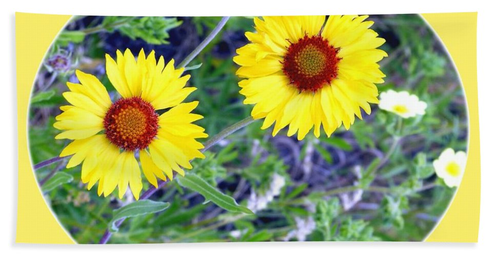 #wildbrown-eyedsusans Hand Towel featuring the photograph A Pair Of Wild Susans by Will Borden