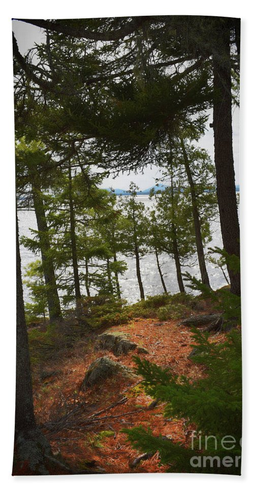 Nature Bath Sheet featuring the photograph A Path To The Point by Skip Willits