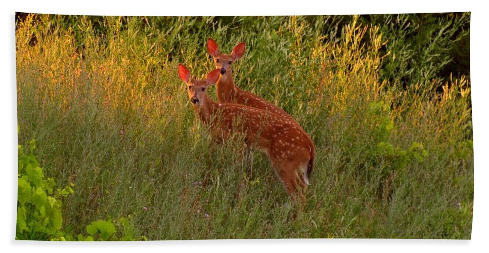 Fawns Bath Sheet featuring the photograph A Perfect Pair by Marilyn Smith