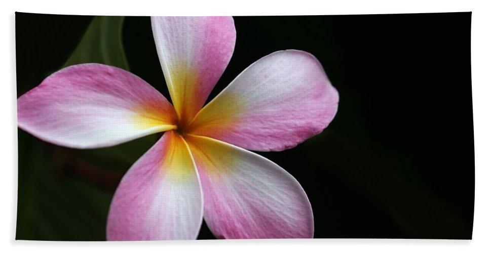 Plumeria Bath Sheet featuring the photograph A Pink Plumeria by Sabrina L Ryan