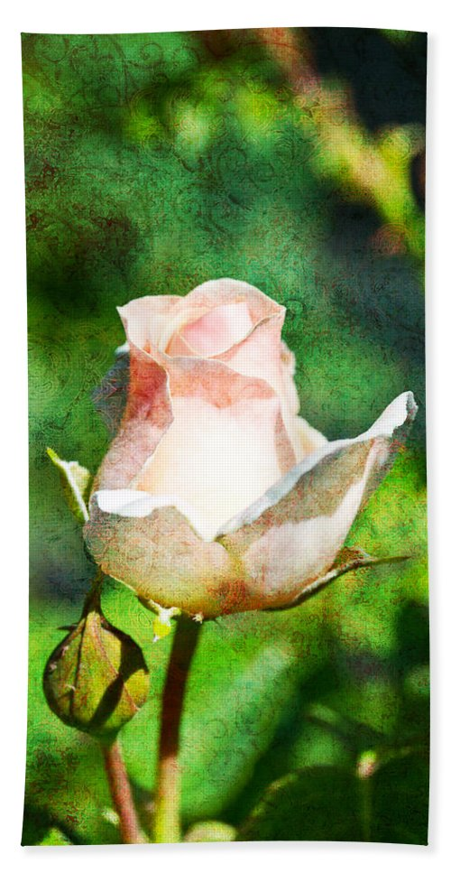 Rose Bath Sheet featuring the photograph A Pink Rose With Texture by Marie Jamieson