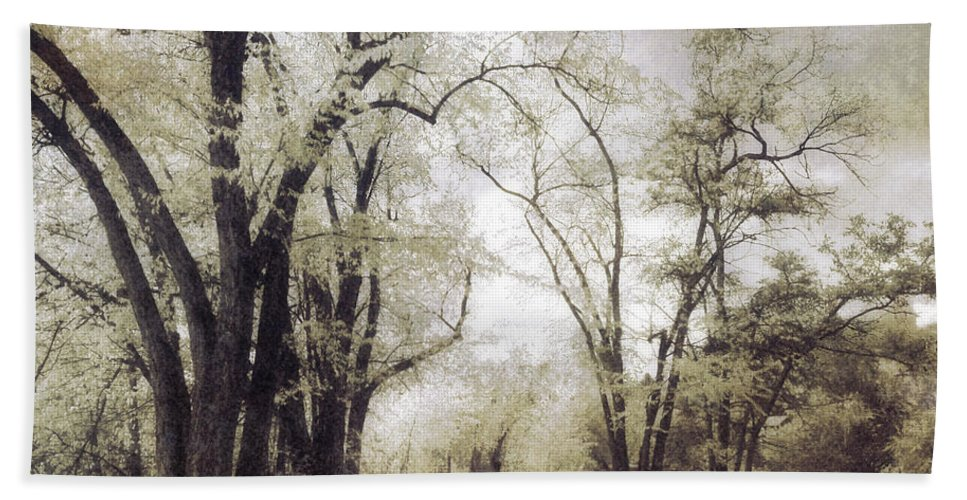 Path Hand Towel featuring the photograph A Place For Dreams To Stay Forever by Tara Turner