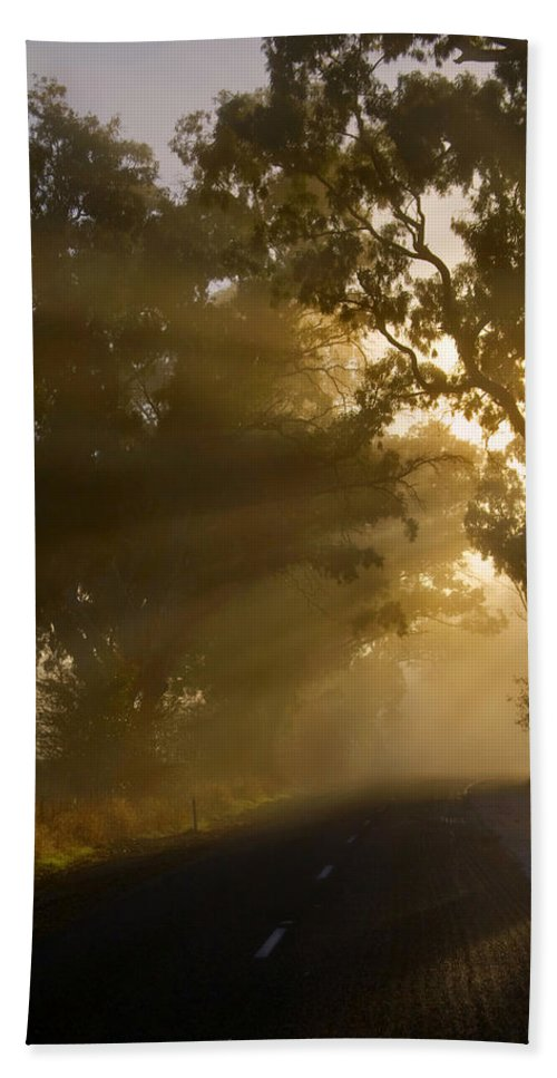 Highway Bath Towel featuring the photograph A Road Less Traveled by Mike Dawson