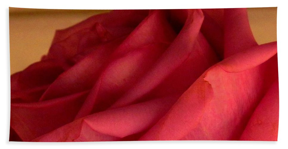 Rose Hand Towel featuring the photograph A Rose In Horizonal by Ian MacDonald