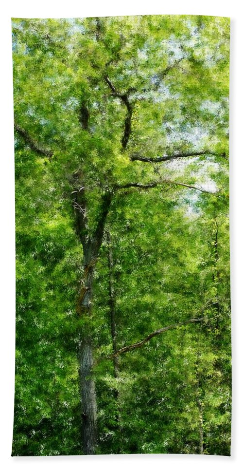 Digital Photo Bath Sheet featuring the photograph A Tree In The Woods At The Hacienda by David Lane