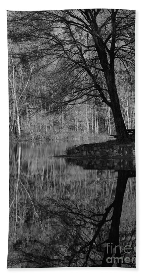 Tree Bath Sheet featuring the photograph A Tree Of A Different Color by Karol Livote
