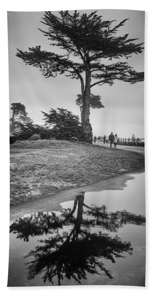 Tree Bath Sheet featuring the photograph A Tree Stands Tall by Lora Lee Chapman