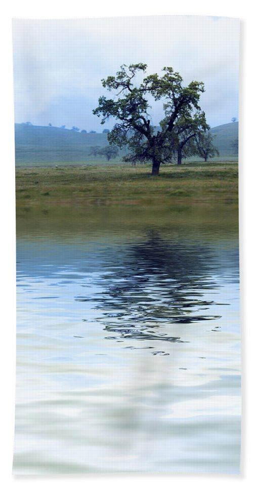 Tree Bath Sheet featuring the photograph A Trees Reflection by Gravityx9  Designs