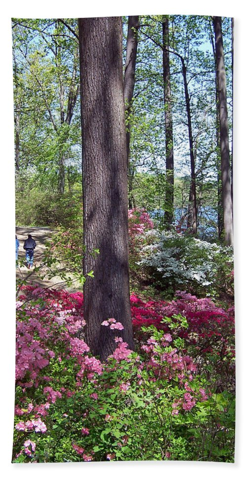 Hand Towel featuring the photograph A Walk Among The Azaleas by Iris Posner