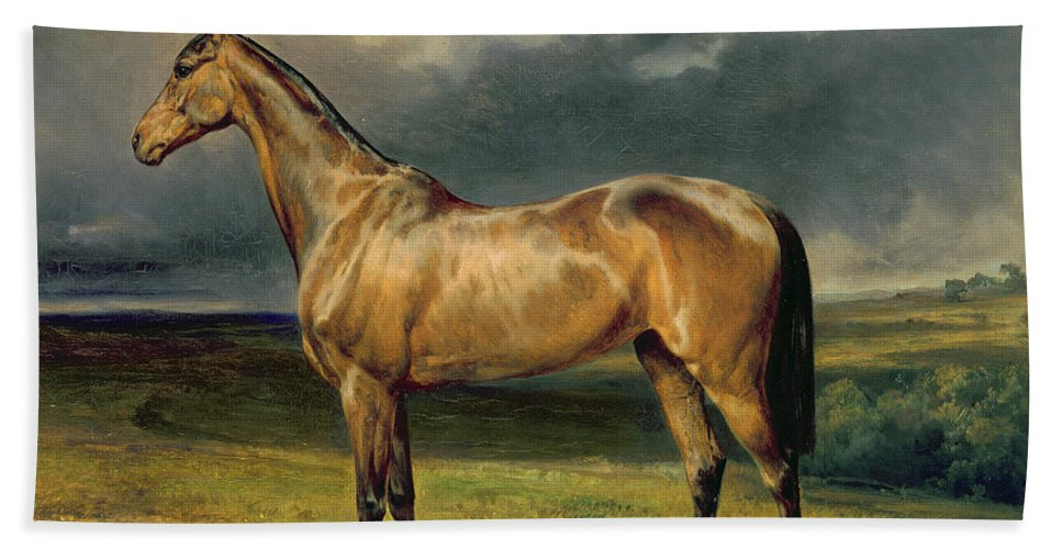 Equestrian; Portrait; Brown; Bay; Landscape; Horse Hand Towel featuring the painting Abdul Medschid The Chestnut Arab Horse by Carl Constantin Steffeck