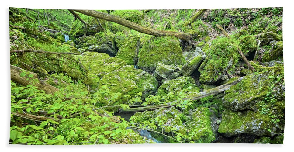 Mossy Hand Towel featuring the photograph Above Moine Creek by Bonfire Photography
