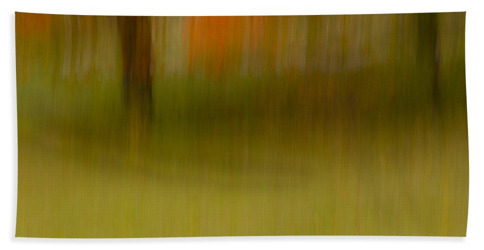 Abstract Bath Sheet featuring the photograph Abstract Autumn by Lindley Johnson