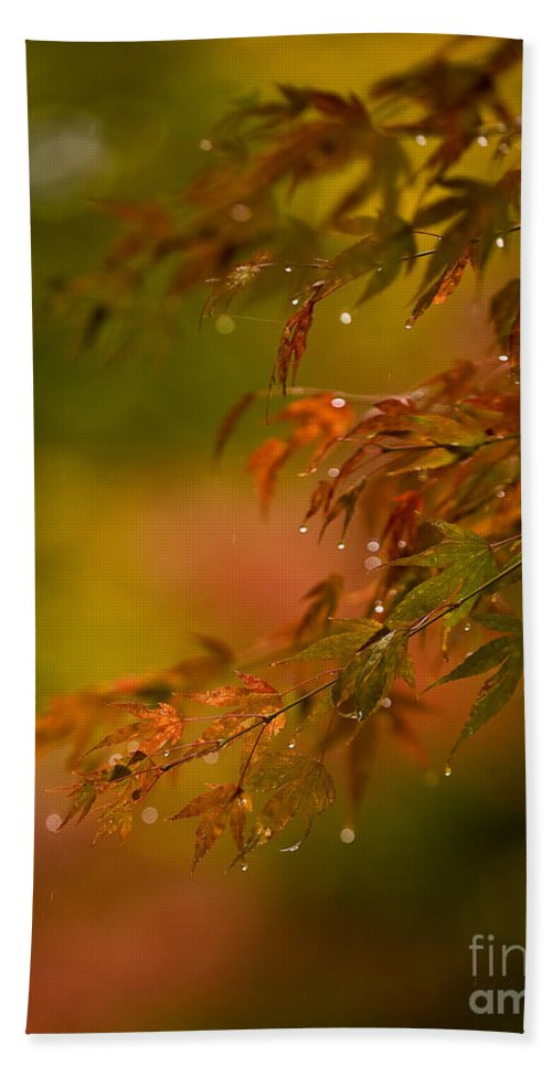 Acer Hand Towel featuring the photograph Acer Jewels by Mike Reid