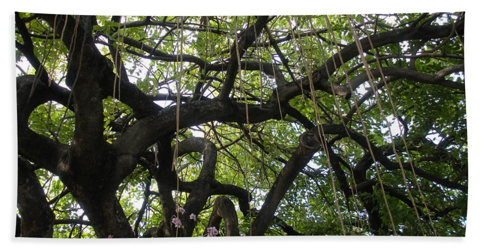 Trees Bath Towel featuring the photograph Aerial Network II by Maria Bonnier-Perez