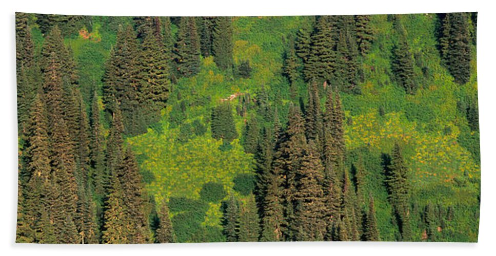 Photography Bath Sheet featuring the photograph Aerial View Of Forest On Mountainside by Panoramic Images