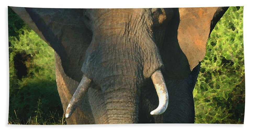 African Bull Elephant Hand Towel featuring the photograph African Bull Elephant by Joseph G Holland