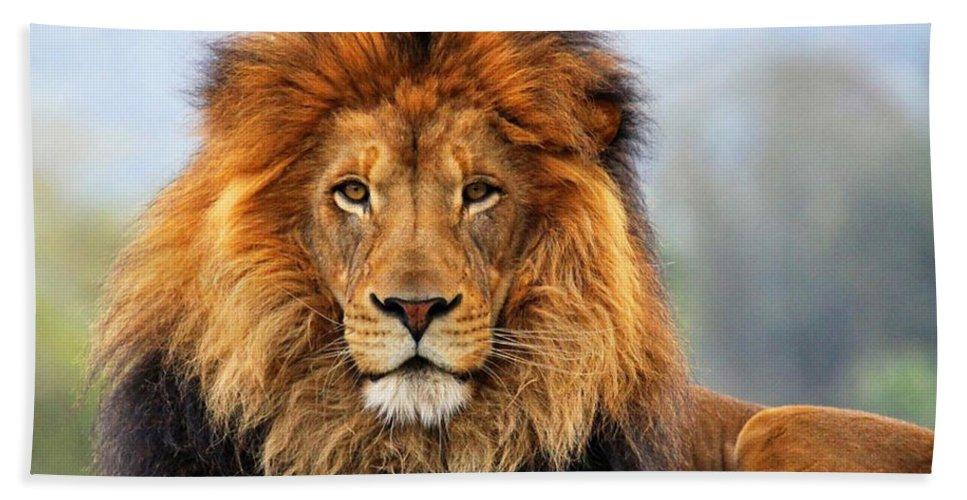 African Lion Bath Sheet featuring the photograph African Lion 1 by Ellen Henneke
