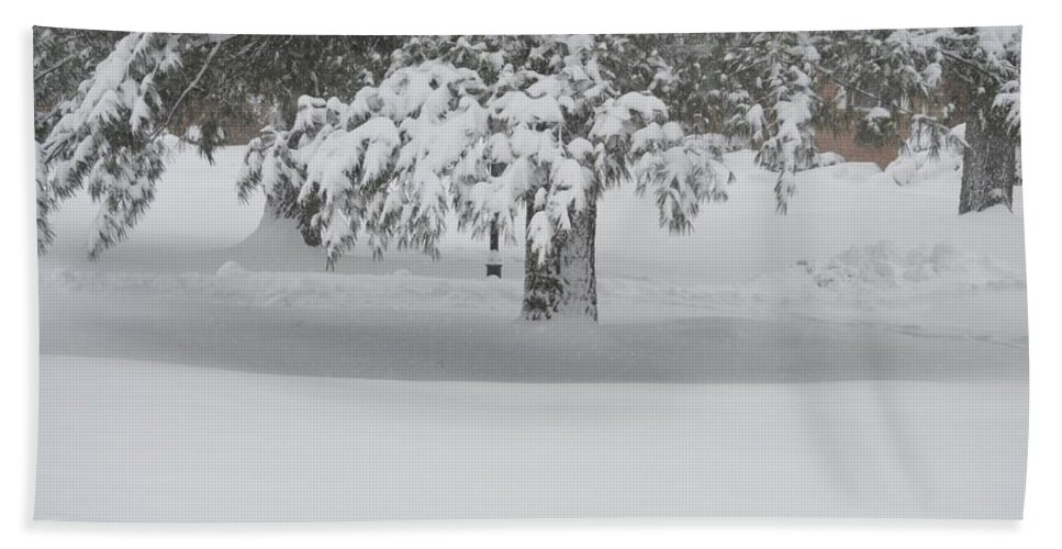 Blizzard Bath Sheet featuring the photograph After The Blizzard by Sonali Gangane