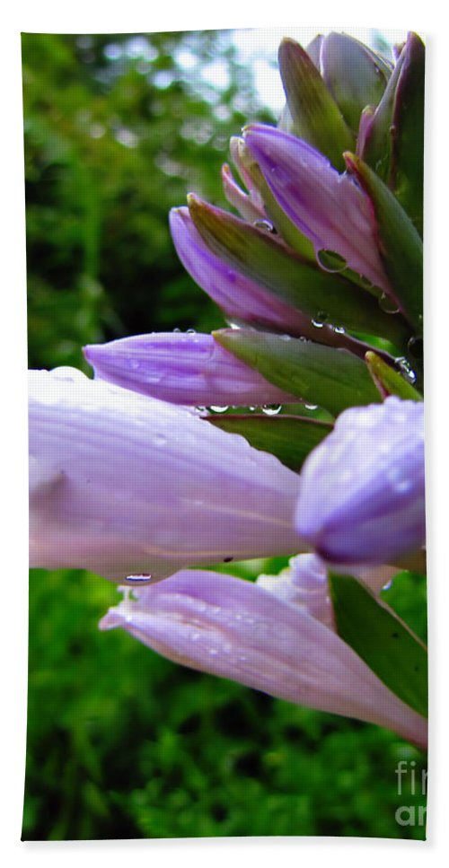 Hosta Bath Sheet featuring the photograph After The Rain by September Stone