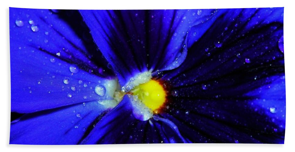 Flower Hand Towel featuring the photograph After The Rain ... by Juergen Weiss