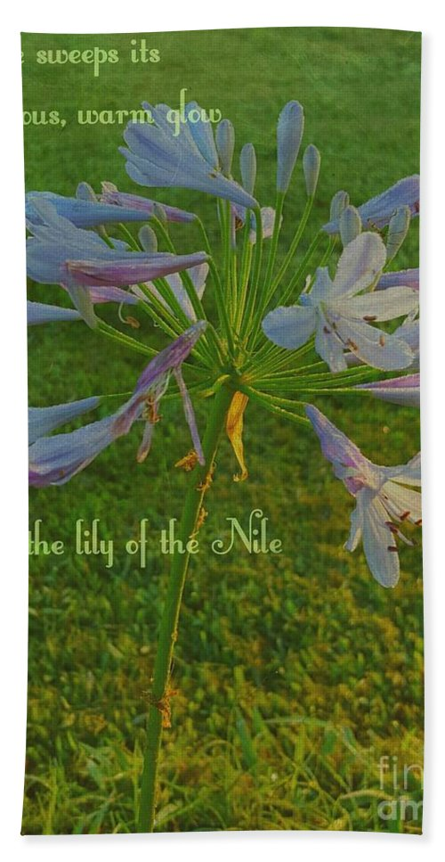 Agapanthus Bath Sheet featuring the digital art Agapanthus Dawn by Pamela Smale Williams