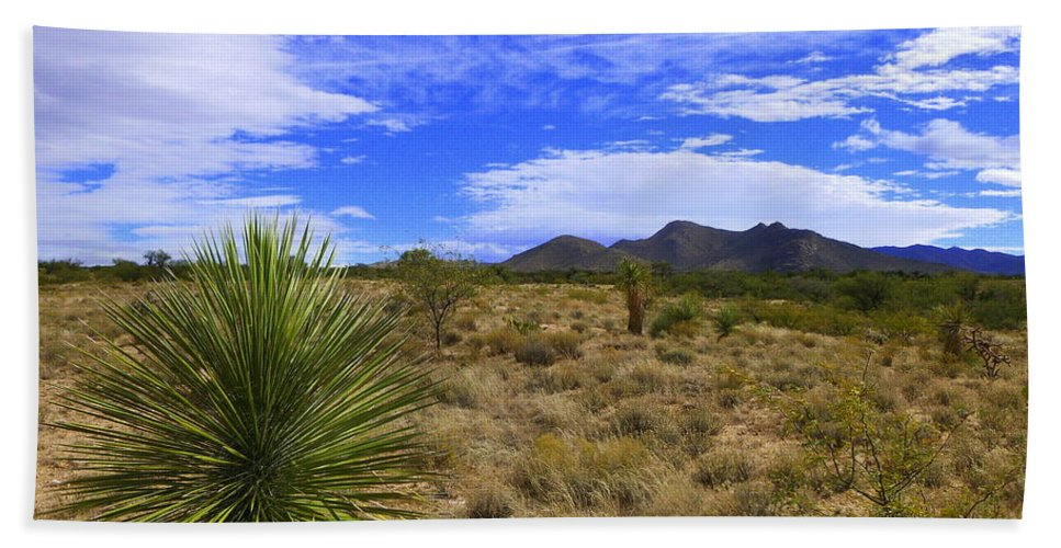 Tucson Hand Towel featuring the photograph Agave And The Mountains 3 by Teresa Stallings