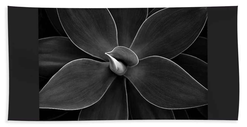 Agave Bath Towel featuring the photograph Agave Leaves Detail by Marilyn Hunt