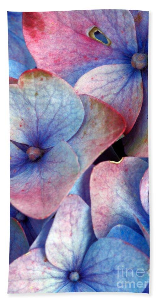 Hydrangea Bath Sheet featuring the photograph Ageing Hydrangea by Gaspar Avila