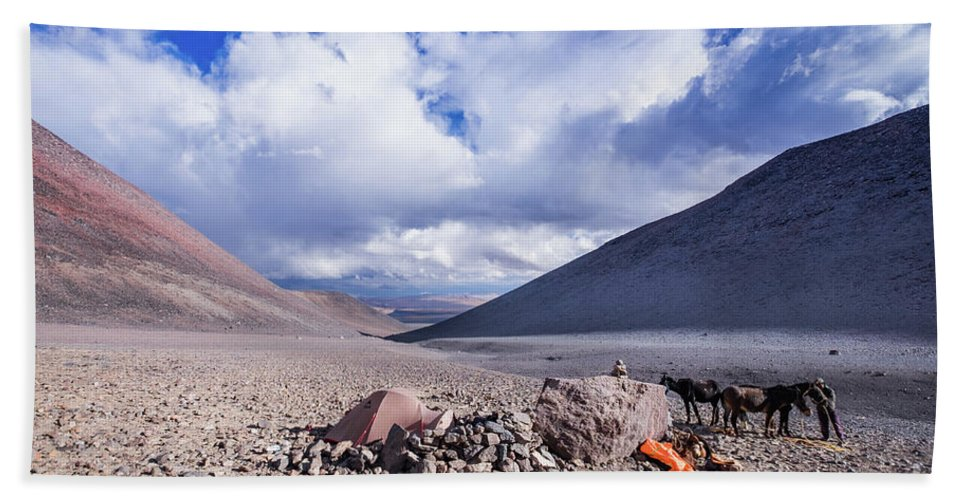 Atacama Hand Towel featuring the photograph Aguas Vicunas by Olivier Steiner