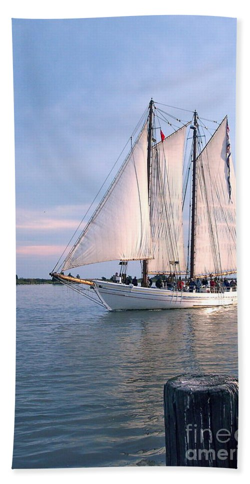 Aj Meerwald Bath Sheet featuring the photograph Aj Meerwald Sailing Up River by Nancy Patterson