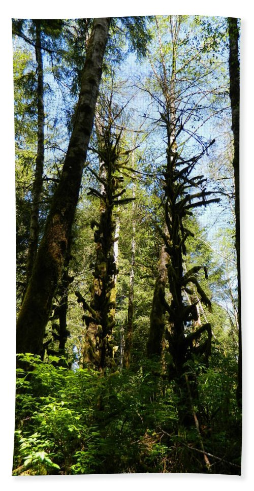 Trees Hand Towel featuring the photograph Alien Trees by Gallery Of Hope