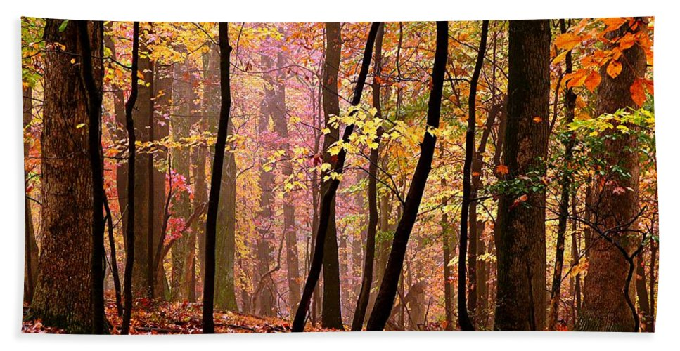 Fall Hand Towel featuring the photograph All Fall by Jefferson Hobbs