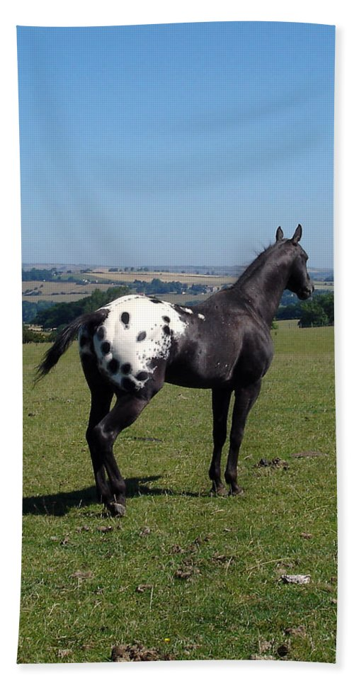 Horses Bath Sheet featuring the photograph All He Surveys by Susan Baker