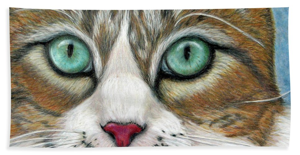 Pet Portraits Bath Sheet featuring the drawing All I Want For Christmas Is A Home by Beverly Fuqua
