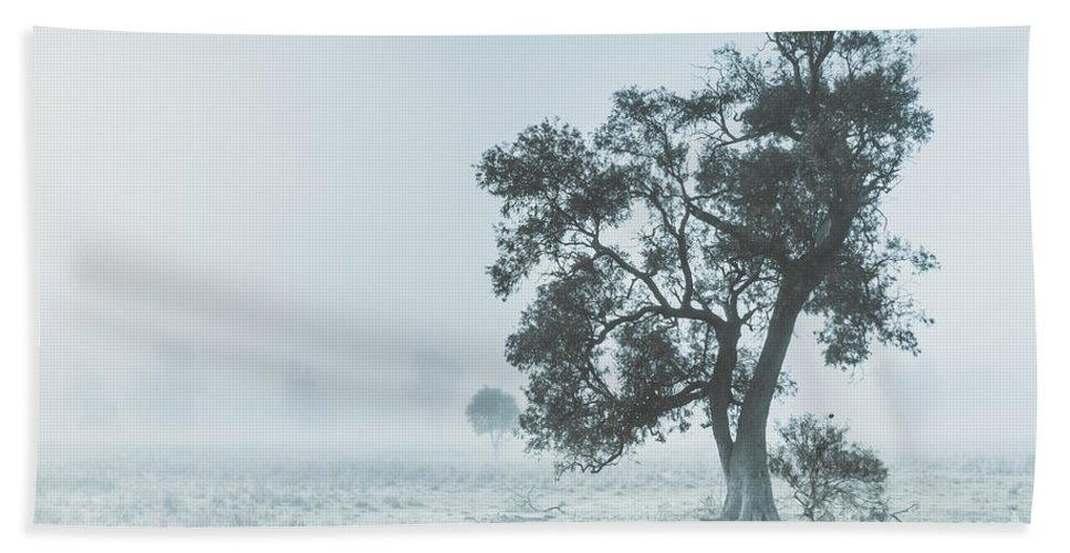 Aleena Hand Towel featuring the photograph Alleena Winter Landscape by Jorgo Photography - Wall Art Gallery