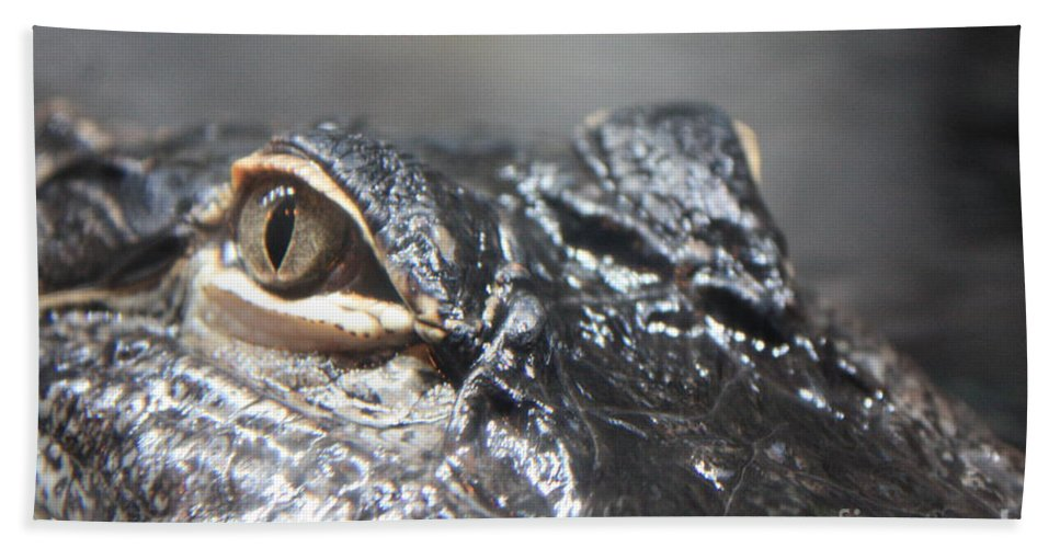 Alligator Hand Towel featuring the photograph Alligator Eye by Carol Groenen