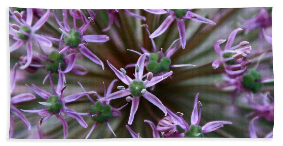 Nature Macro Hand Towel featuring the photograph Allium Macro by Carol Groenen