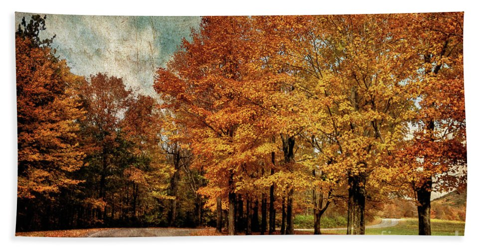 Country Road Bath Sheet featuring the photograph Almost Home by Lois Bryan