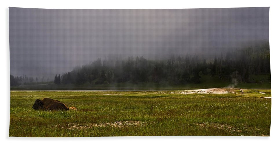 Nature Hand Towel featuring the photograph Alone In Fog by John K Sampson