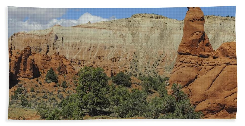 Panorama Trail Hand Towel featuring the photograph Along Panorama Trail by NaturesPix